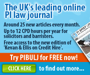 06 PI Brief Update and Law Journal